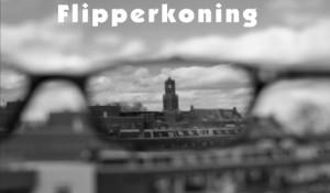 Flipperkoning – Passie voor beelden